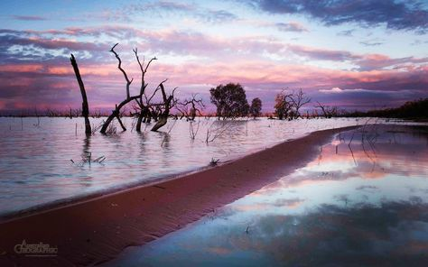 Menindee Lakes----Sunset over the west shore of Pamamaroo Lake, Menindee, New South Wales, Australia. Photo by Bill Hatcher.