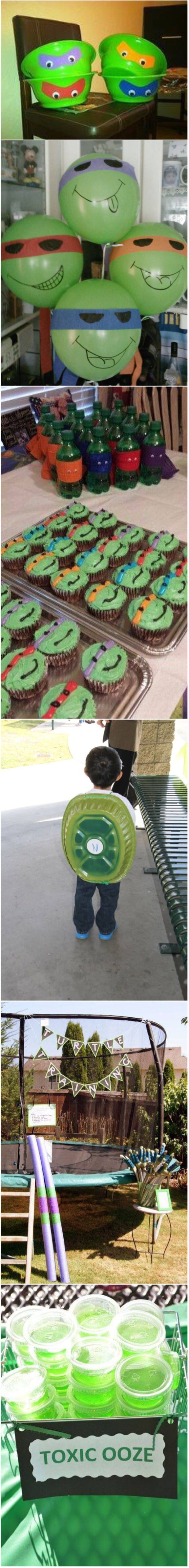 German company builds the ultimate indoor cat walkway softpedia - Tmnt Birthday Party Ideas