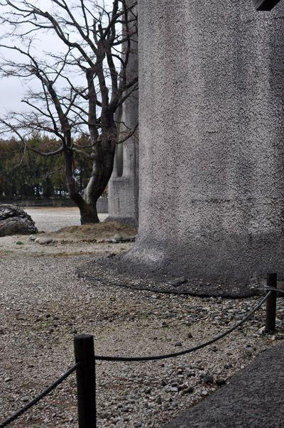 3月 | 2014 | 新潟 | 東京 | 金子勉建築設計事務所DIARY