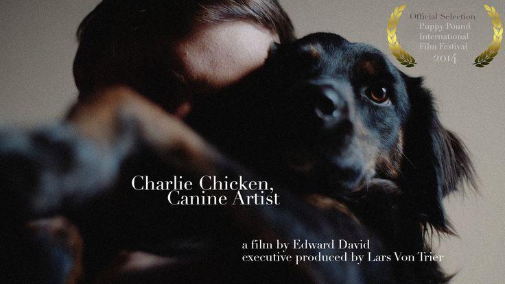 Charlie Chicken, Canine Artist - [Short Documentary]