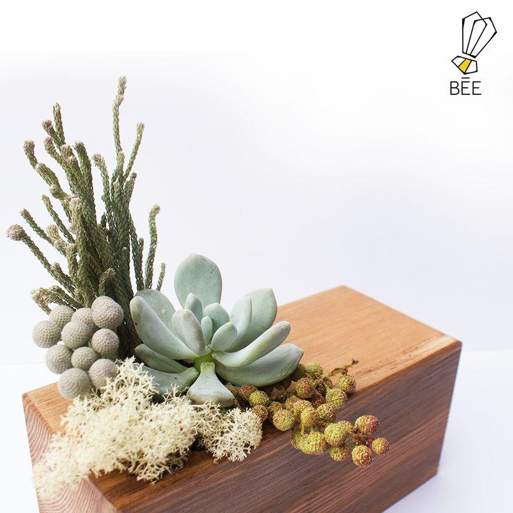 Pastel tonlar... Sipariş için: zeynep@beedesignandflowershop.com adresinden iletişime geçebilirsiniz. #beedesignandflowershop#art#design#decoration#jar#interiordesign#indoorgardening#nature#treebowl#plant#asparagus#justice#green#sculpture#flower#concept#handmade#succulent#çiçek#tasarım#bitki#yeşil#aranjman#arrangement#ahşap#wood#woodplanter#wooddesign#saksı#çiçektasarımı