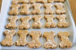 Gatti & Cani di Casa: Biscotti con frutta e avena (ricetta)