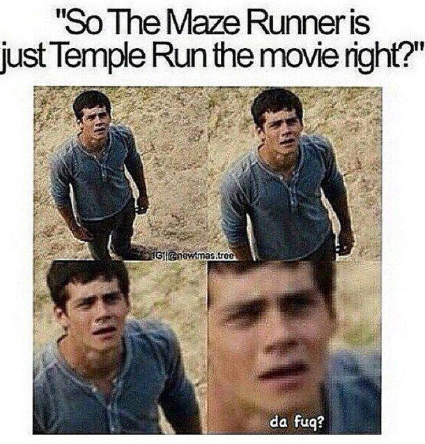 funny the maze runner - Google zoeken