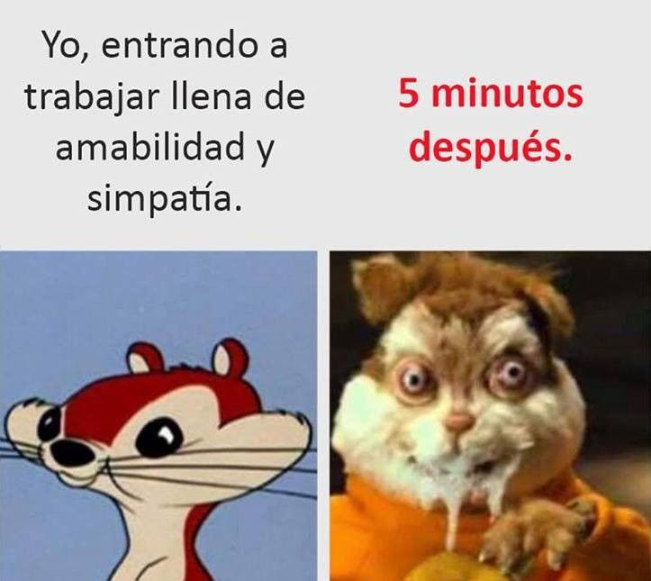 Pin By Paula Munoz On Malditas Favoritas Humor Funny Spanish Memes
