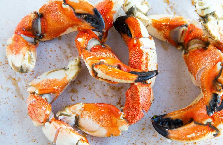 When Stone Crab prices go up, switch over to Jonah Crab Claws and you'll never notice a difference! These tasty cousins of Stone Crabs are delicious!