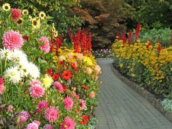 Garden Design Victoria Bc 513 best butchart gardens, victoria, b.c. canada images on