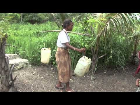 CWS at work: Providing clean water.  With community leadership, and a little help from CWS, villages like this one in West Timor, Indonesia, have clean, safe water from a basic reservoir, saving miles of walking.
