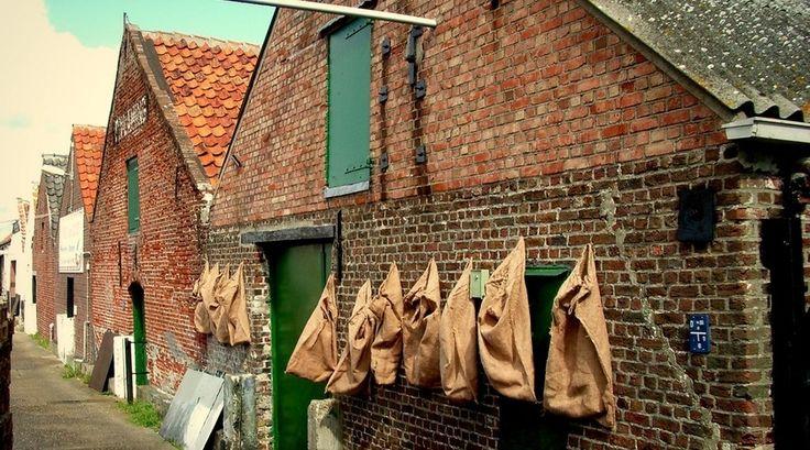 """""""Gek op mossels, oesters of vis? In het Zeeuwse Yerseke kun je deze zilte zaligheden niet alleen proeven, je kunt ook het hele verwerkingsproces met eigen ogen aanschouwen!"""" Lees verder op www.reiskrantreporter.nl/reports/6433"""