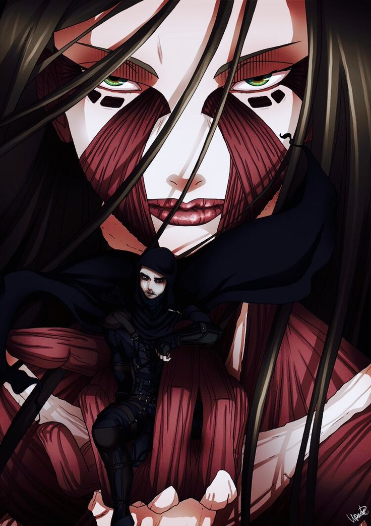 31 best Attack on Titan(SnK) images on Pinterest ...