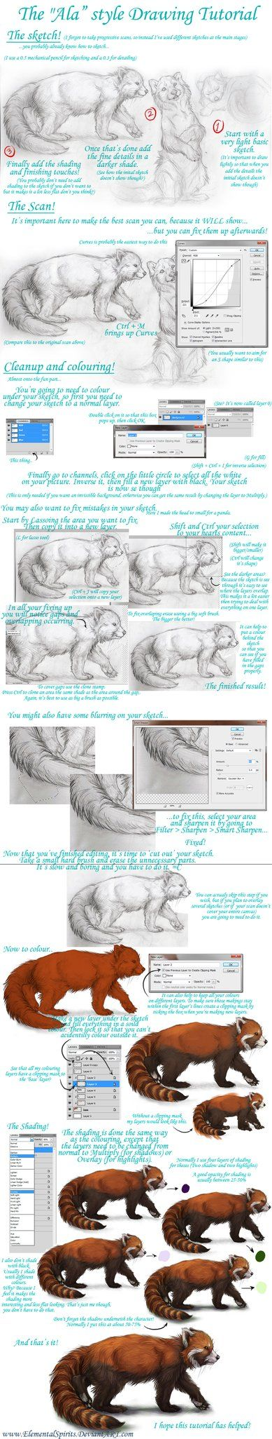 Drawing a Realistic Fur Animal