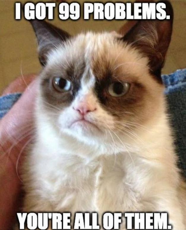 VIDEO Grumpy Cat (pisica morocănoasă) va fi vedetă de film la Hollywood