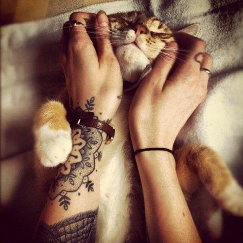 chat femme tatouage