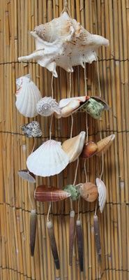 Lambis Seashell & Other Shells Wind Chimes  #windchimes, #seashells, #californiaseashellcompany