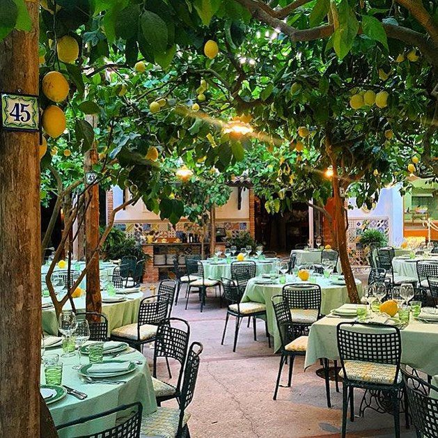 Al Paolino Lemon Tree Restaurant Capri In 2019 Tree