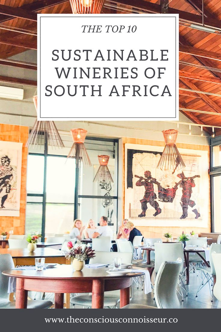 A month long journey through South Africa's most stunning and delicious wine farms and producers #wine #winery #winelovers #southafrica #southafricanwine