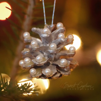 Pine cone ornament - Beauty Out of Painful Times