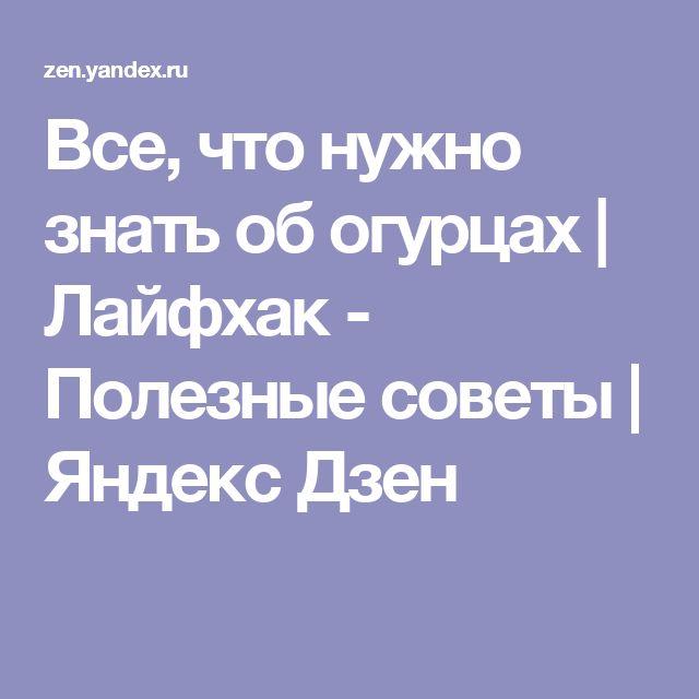 Все, что нужно знать об огурцах | Лайфхак - Полезные советы | Яндекс Дзен
