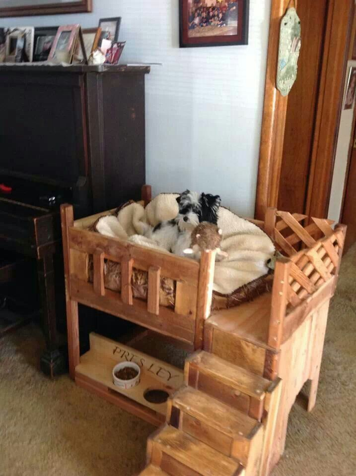 249 best furniture for our pets! images on pinterest