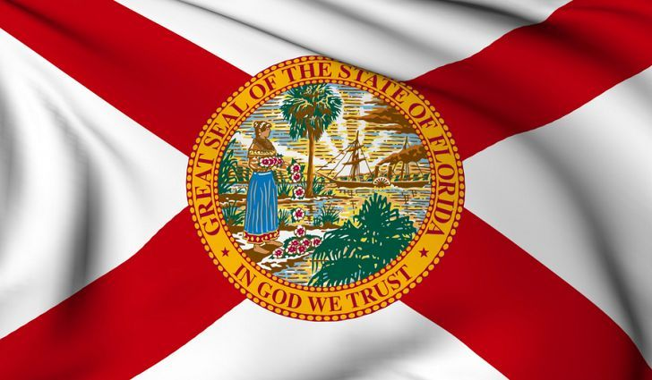 Have The Time Of Your Life In Orlando Florida State Flag State Flags Florida Flag