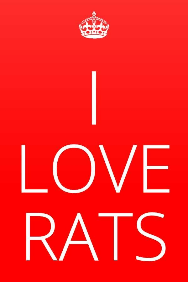 Rats!