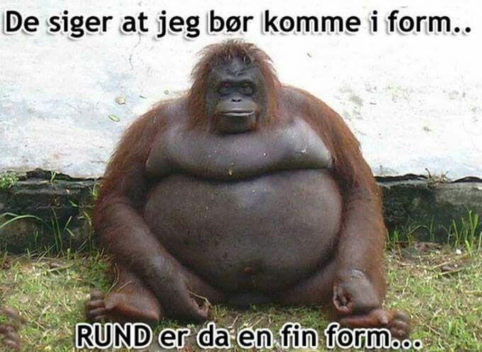 Dansk humor
