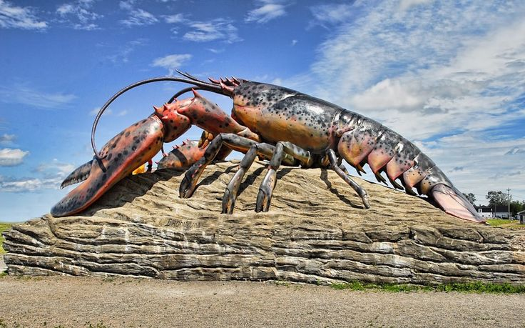 Lobsters mustn't be kept in ice, a court says