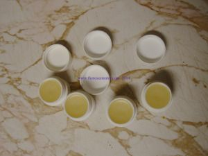 Peppermint Comfrey lip balm - great for dry winter lips!