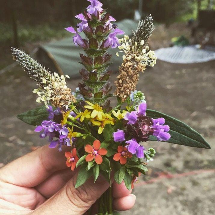 Wildflower Posy//