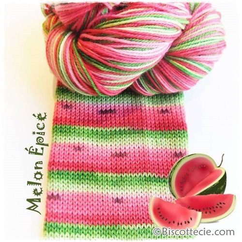 Bis-sock yarn Watermelon self-striping hand-dyed yarn from Biscotte yarns
