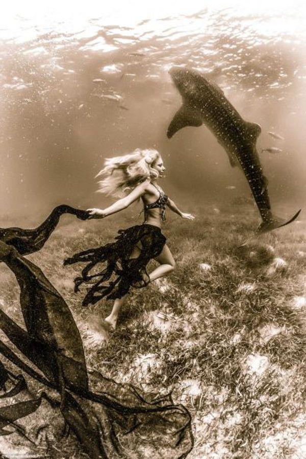 リトル・マーメイドといえば、女の子の憧れ。 誰もが一度は、マーメイドのように魚たちと海を泳ぐことを夢見たはず。 Hannah Fraserさんもそんな1人で、子どもの頃は自分で人魚姫のヒレを作っていたという。 しかし彼女のスゴいところは、その夢を実現させてしまったこと! 言うまでもなく、これらはCGでも合成で