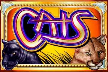 You can play slot Cats