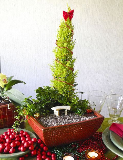 Indoor miniature gardening - new blog post is up! #miniaturegarden