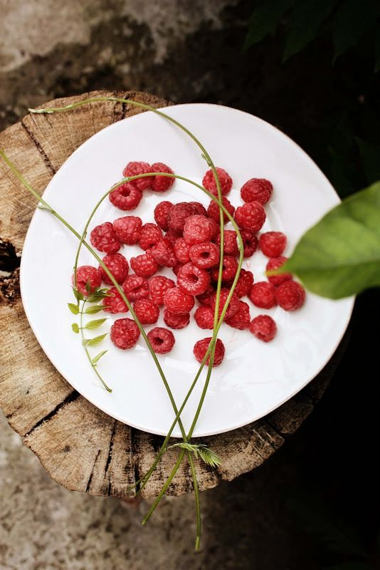 Pratos e Travessas: Clafoutis de framboesas e erva cidreira - Lemon balm and raspberries clafoutis | Food, photography and stories