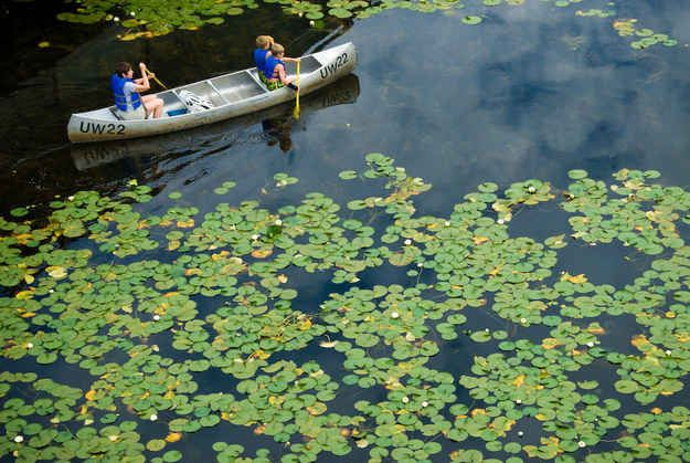 Seattle- Rent a canoe at The WAC. The University of Washington (Go Huskies!) has a backyard filled with scenic wonders. Pass the blooming cherry trees in The Quad, walk down to The WAC, and canoe to your heart's content. The WAC is open to the public.
