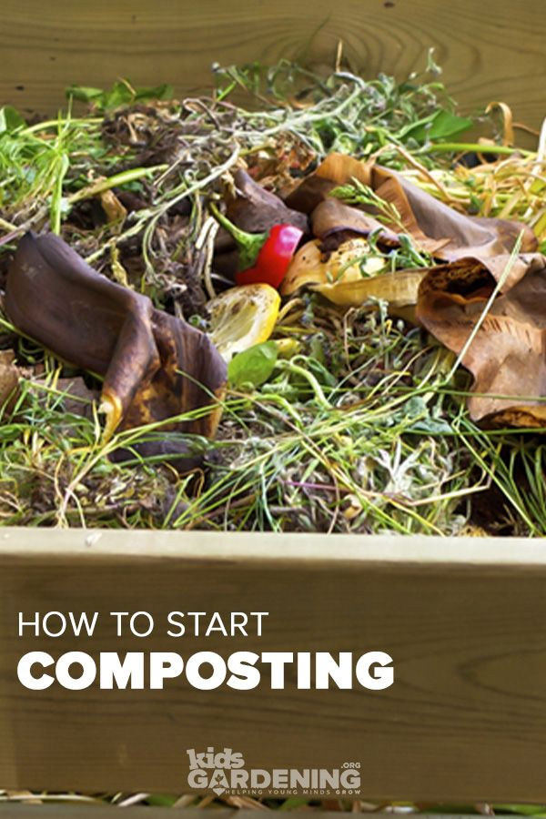 Gardening Basics Composting How To Start Composting How To