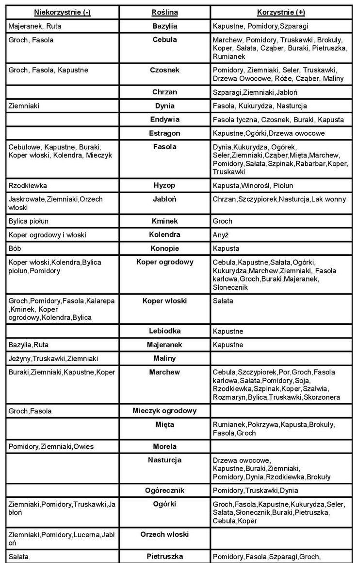 tabelka współrzędności-page-001