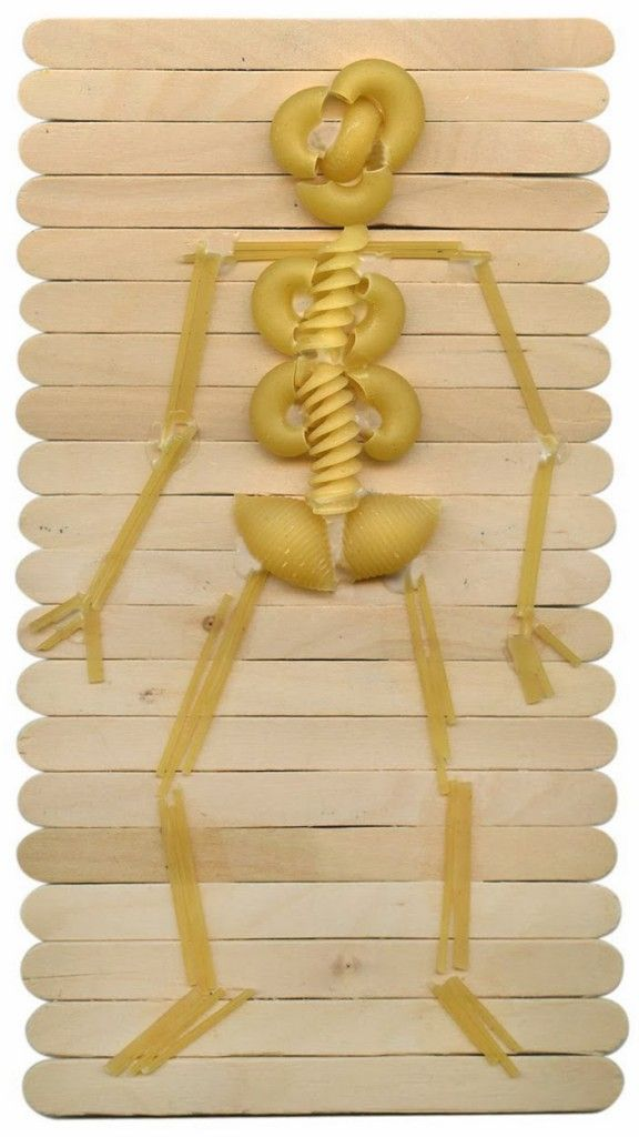 Make a Skeleton with Pasta. Learn a little anatomy while making art. #skeleton #pasta #craftsticks