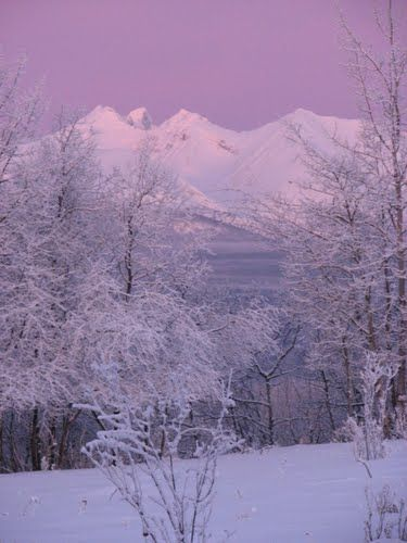 Pink Skies over Hudson Bay Mountain, Smithers, BC aka home