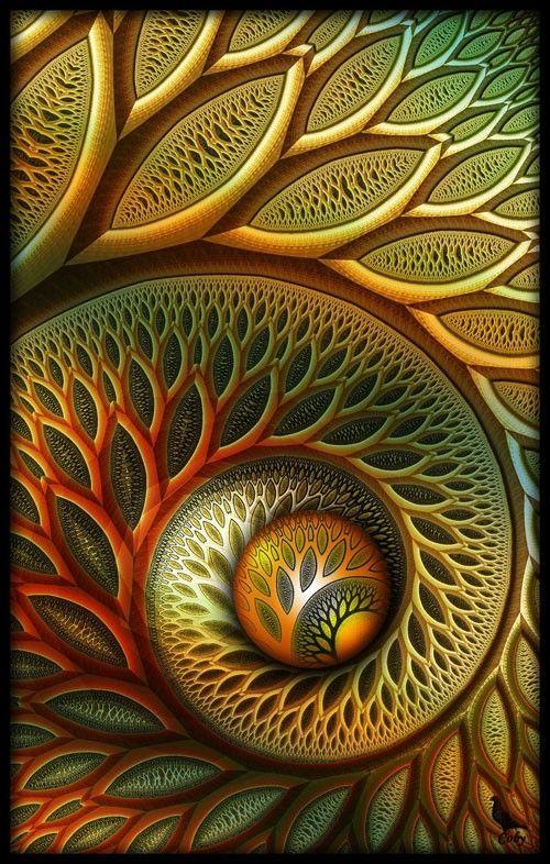 17 best ideas about fibonacci spiral on pinterest golden for Golden ratio artwork