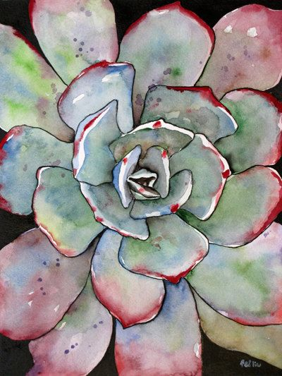 Succulent Watercolor Art Print Agave Painting, Matted to 11x14 // $22