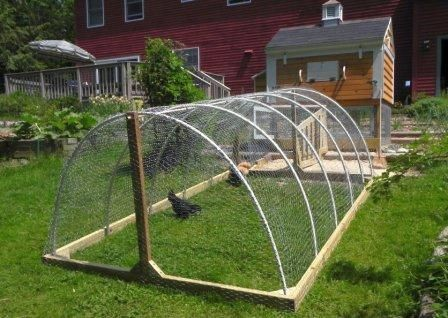 25 best ideas about hoop house chickens on pinterest for Movable chicken coop plans free