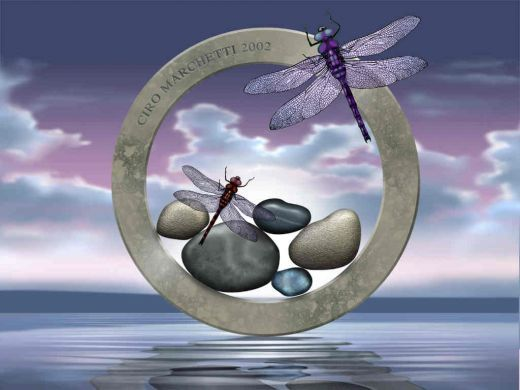 Dragonflies and Stones - art
