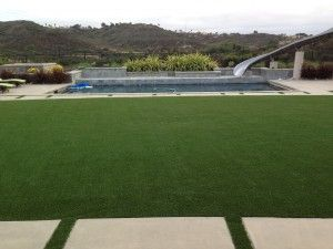 Green, lush and durable AstroTurf lawns are the way to go!   AstroTurf is very eco-friendly and extremely durable; Skip the cost of water, mowing and nurturing.