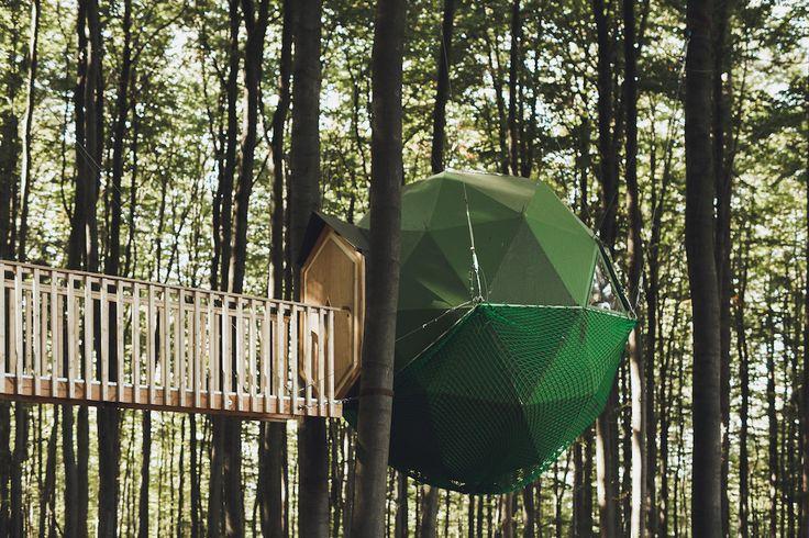 Treehouse Hotels Robin's Nest – iGNANT.de