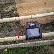 Solar electric fence for pigs, but I wonder if this would work for my veggie garden to keep coons, squirles etc. out????