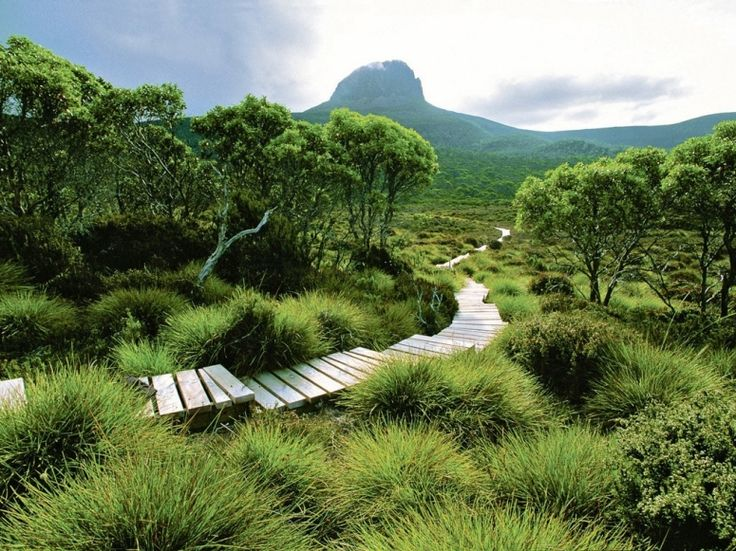 cradle mountain huts trek along the Overland Track, Tasmania