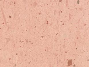 Resultado de imagen para cantera rosa