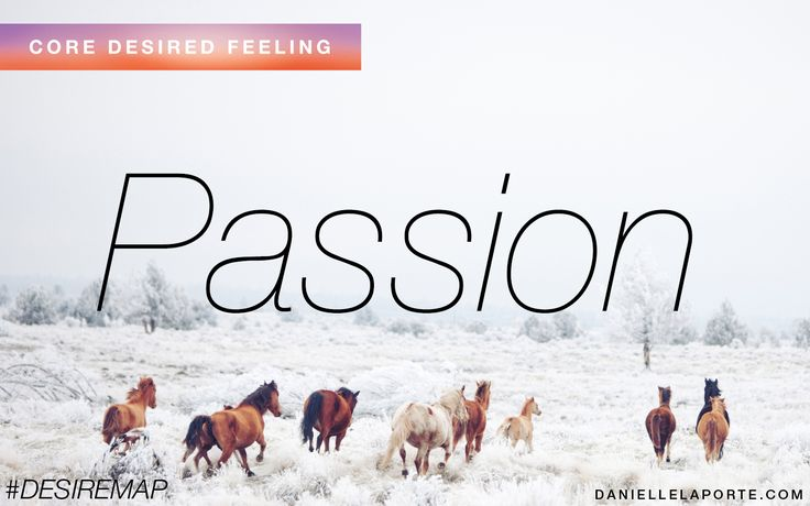 Passion - On Fire, Dedicated, In Love, Sexy, This-Is-It!, Nothing Else Will Do!, Got-To-Have It! How do you want to feel?