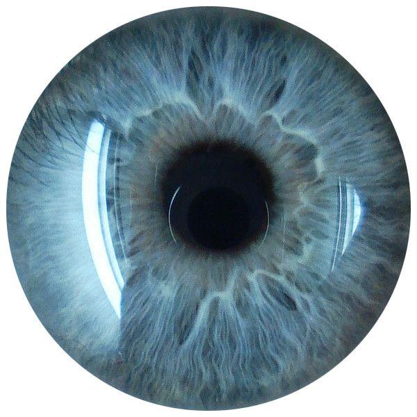 500 Best Eyes Lense Png Full Hd Transparent Images Brown Eyes Eyes Blue Background Images