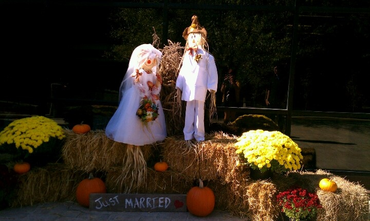 Fall Wedding Decor Bride Amp Groom Scarecrows Save The